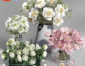3D Realistic Natural Fresh Peonies in Different Vases