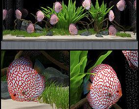 Aquarium 3D water