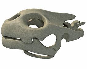 3D model Tortoise Skull Head