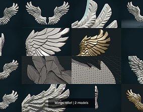 3D Wings relief air