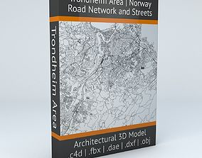 Trondheim Area Road Network and Streets 3D