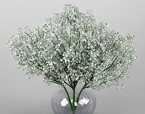 3D nature Ornamental plant 19 Baby breath spray
