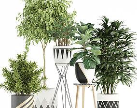 Plants collection 112 3D