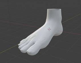 3D model Human-Feet