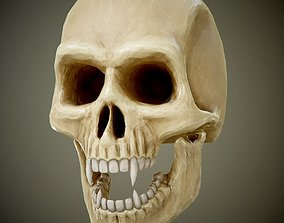 3D asset skull with fangs PBR Game-Ready