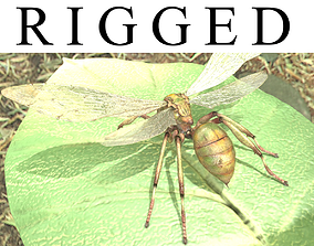 3D model rigged Ant ancient