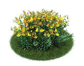 Long Stemmed Flowering Plant 3D