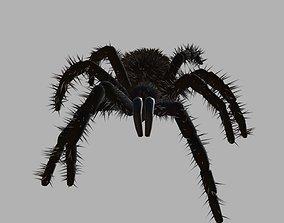 VR / AR ready Spider Game Model