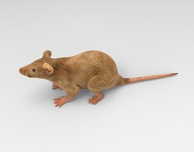3D Mouse mice