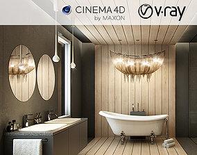 VRay - C4D Scene files - Modern-Classic Bathroom 3D model