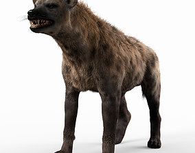 Hyena For Production 3D model