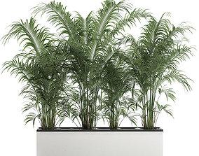 3D Decorative palm in a flowerpot 691