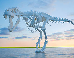 3D model dinosaur skeleton