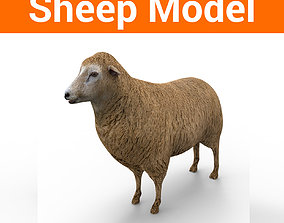 3D Black Sheep Model low-poly