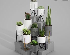 PLANT MODEL 3