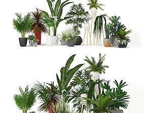 Plants collection leaf 3D
