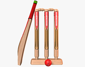 Cricket Kit Collection 3D asset