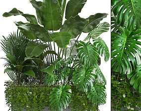 3D flowers Collection Exotic plants