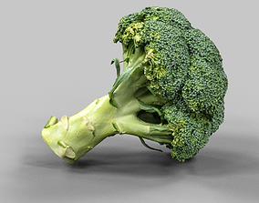 pumpkin Broccoli 3D asset low-poly