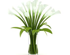 Lilies in Vase 3D