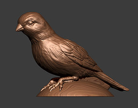 Canary 3D printable model