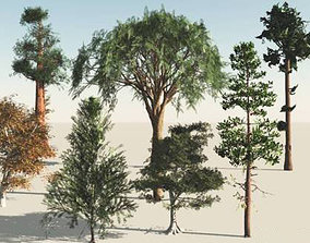 3D 9 Trees