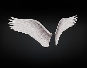 Angel Wings Type 3 3D model