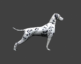 3D model GAME-READY DOG