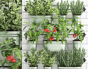 3D decorative plants for the kitchen on railing 380