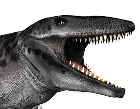 Mosasaur Tylosaurus 3D asset