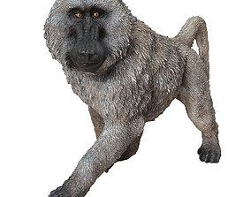 3D model Deco Figurine Monkey Walking Baboon XL