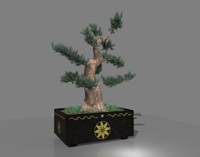 3D model BONSAI WITH POT