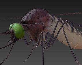 Mosquito 3D model low-poly