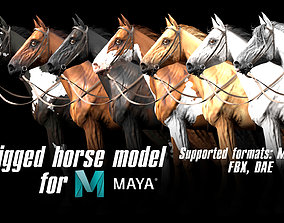3D asset game-ready Horse rigged model for Maya