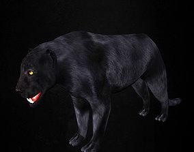 Panther 3D model Low-poly 3d model