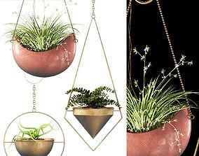 3D Hanging plants 143