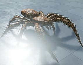 3D model Spider Rigged and Game Ready