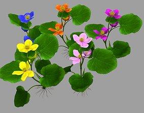 Flower Faroe 3D asset