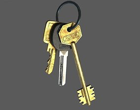 3D model Door keys