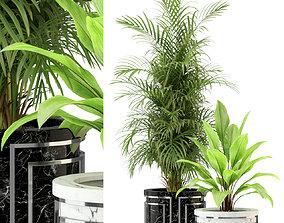Plants collection 295 3D