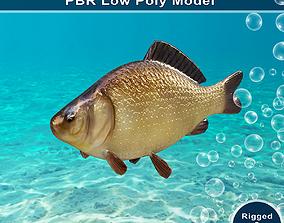 Crucian Fish Animated Model 3D asset