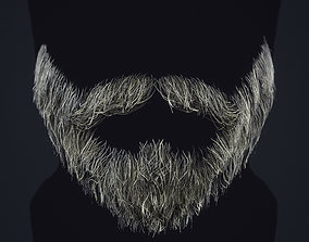 3D model Beard RealTime 1