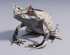 3D model Malayan Horned Frog - Animated
