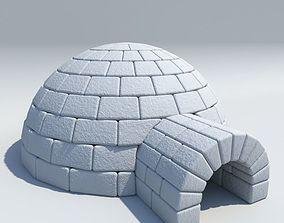 penguin 3D model Igloo