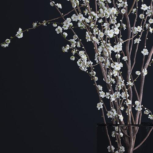 prunus-white-blossom-3d-model-max-obj-fb