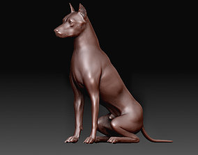 3D print model Dog Doberman
