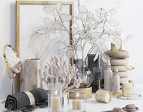 Decorative set with Lunaria 3D model