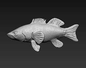 3D model Grouper