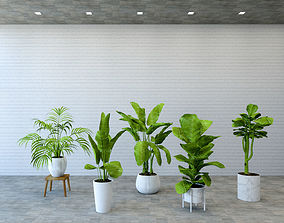 Tree collection for revit 3D asset game-ready