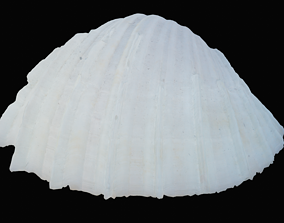 3D asset Sharp Bivalve Sea Shell